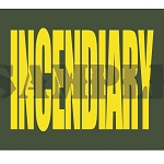 Ammo Can Magnet INCENDIARY  - Yellow Standard .50Cal