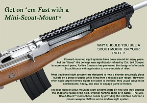 Amega Ranges Mini-14 / Mini-30 Scout Mount